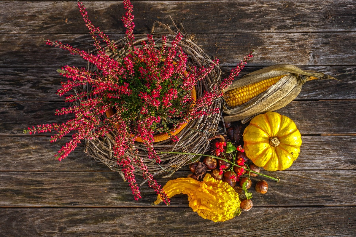 Herbstdekoration für den Tisch
